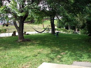 Asheville house photo - Large fenced front yard shaded by big leafy trees with a hammock