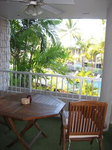 View from the lanai surrounded by lush palms and over looking the pool.