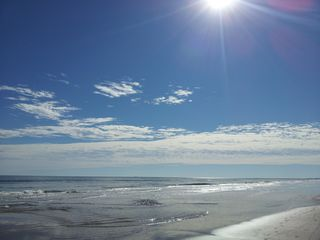 South Padre Island condo photo - Morning Walk on the Beach