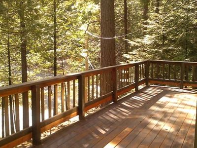 Large Deck Surrounded by Trees - Large Deck Surrounded by Trees