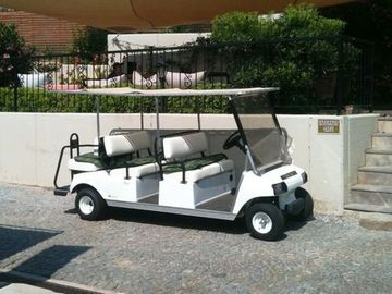 Quiet chaffuer driven golf car to ferry you around