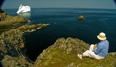 Iceberg Viewing on Twillingate Island