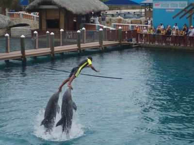 Free Ocean World passes worth $55 per person with Villa rental