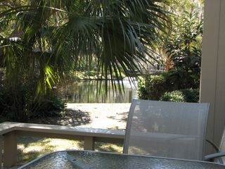 Sea Pines villa photo - Back deck and Lagoon