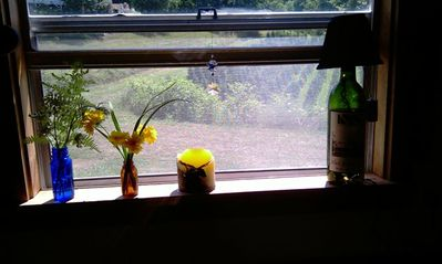West Jefferson cottage rental - Out the kitchen window...a lazy summer morning.