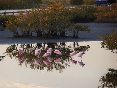 Enjoy nature at MI National Wildlife Refuge
