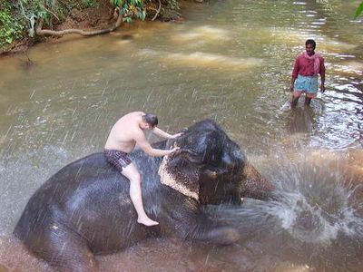 South Goa apartment rental - Bathing with the elephants