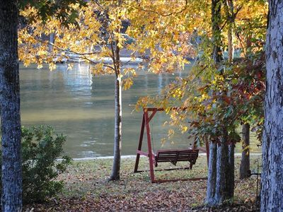 Relaxing Lakeside Swing
