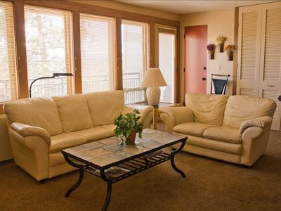 Living room with comfortable leather sofas