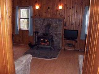 Harrisonburg cabin photo - Wood stove.