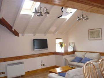 Living room with pitched ceiling