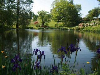 Lovettsville cottage photo - WeatherLea Farm Pond in Spring
