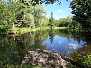 Roxbury cabin photo - Lovely pond right outside your front door!
