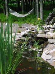 Bushkill chalet photo - pond and hammock