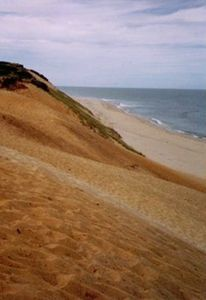 Wellfleet house rental - Cahoon Hollow Beach is only 1.9 miles down the road from our house, Cedardown.