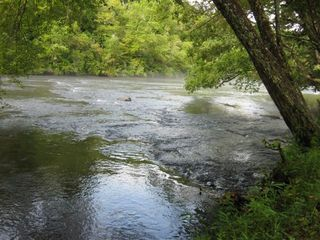 Hayesville cabin photo - The Hiwassee River in front of the cabin