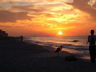 Gulf Shores condo photo - Sunrise and Fishing
