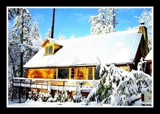 Twain Harte cabin photo - Ski Dodgeridge in Just 20 minutes
