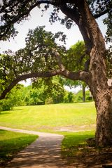 Austin condo photo - Hike/Bike on Walnut Creek Greenbelt...