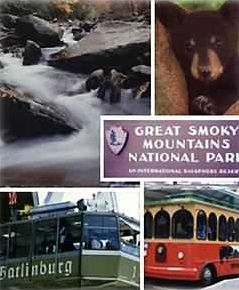 Experience The Great Smoky Mountains