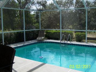 Spring Hill house photo - Pool.