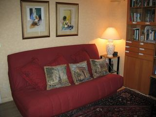 8th Arrondissement Champs Elysees apartment photo - Couch converts easily into comfortable full bed. Sometimes it has a red cover.