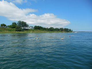 Orleans house photo - Beautiful kayaking in Nauset Inlet, 2 min. from the house.
