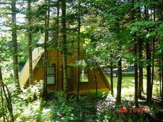 Rear of the A-Frame - Pittsburg house vacation rental photo