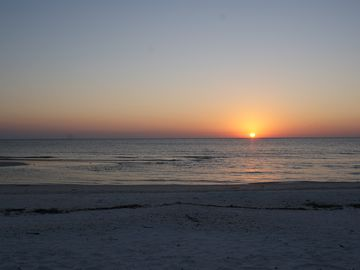 Return to the beach at dusk to view the sun 'drop' into the Gulf & see dolphins!