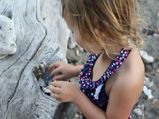 Puako house photo - Playing with nature's abundant offerings... children of all ages welcome.