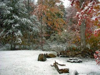 Greenville cabin photo - One brightly colored fall we received a snow dusting. Awesome!