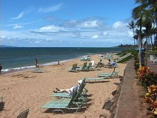 Lahaina condo photo - Beach at the Kaanapali Shores