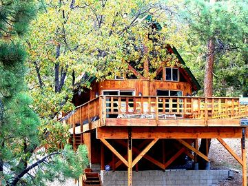 Moonridge cabin rental - Picturesque Fall view of cabin