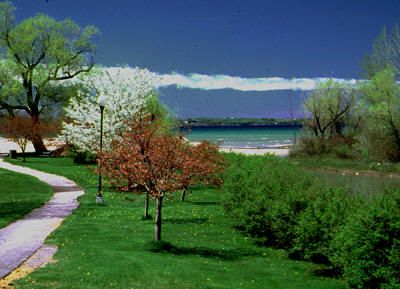 Elk Rapids house rental - Enjoy an afternoon in the park or at the beach.