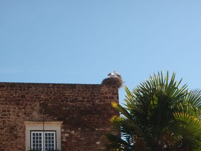 One of the numerous stork nests in Silves