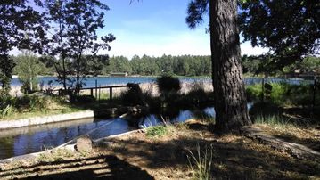 Pinetop house rental - Backyard lake view