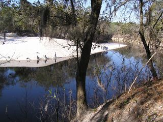 Suwannee River house photo - View from The River House