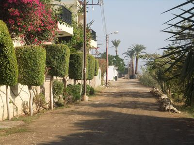 Our street by the Nile