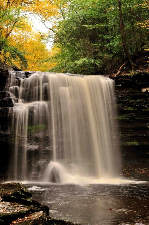 Minutes to Ricketts Glen State Park-Quiet Country setting with beautiful views