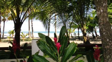 the casa is surrounded by ginger, coconut palms, and hibiscus...