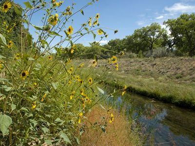 Acequia out the gate with miles of hiking/biking trails along the Rio Grande.