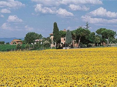 Apartment for 4 people, with swimming pool, in Montepulciano