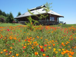 Jenner house photo - Japanese Farmhouse. Wildflowers abound. 5 acre meadow Spectacular setting