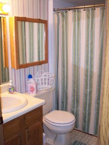 Gladwin cottage rental - Bathroom