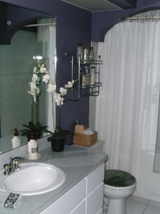 Second bath- located near bedroom 2 and 3. Full shower and tub