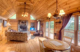 Ellijay cabin photo - Living area with dinette