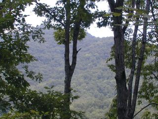 Bryson City cabin photo - Long Range Views