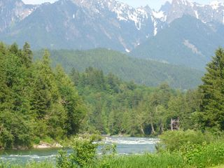 Stevens Pass cabin photo - Blue River Cabin is on the Skykomish River, in the trees up river