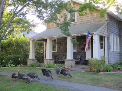 Enjoy your coffee on the front porch while watching local turkeys.