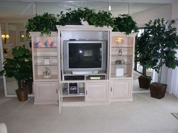 Electronics DVD, VCR, Stereo to entertain you in Style!